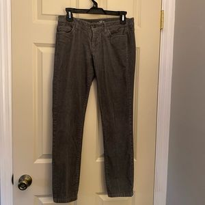 Thin whale Skinny cords